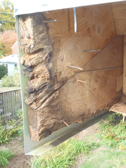 gable end rot